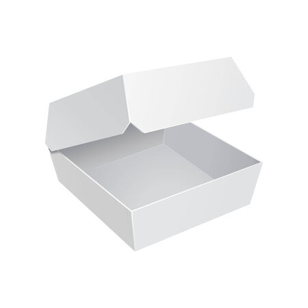 lunch box: White Fast Food Carton Plastic Container For Burger Sandwich  Ready For Your Design  Product Packing Vector EPS10  Illustration