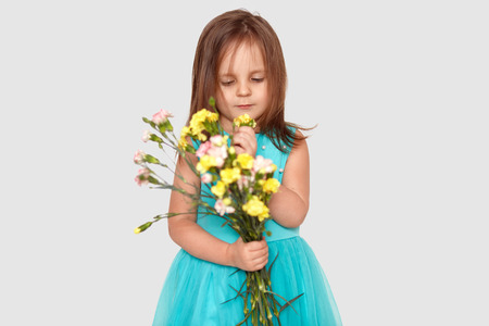 Pleasant looking kid with dark straight hair, focused down on flowers, wears poofy blue dress, isolated over white background, likes bouquet. Thoughtful pretty girl has festive event or holiday Stock Photo