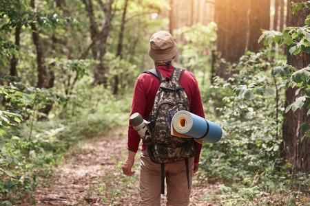 Back view of elderly hipster man wanderlust exploring forest with giant trees in National park on trip carrying backpack, senior male trekking during journey on vacations. Active vacation concept.