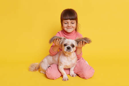 Little girl and her friendly dog isolated over yellow background, funny smiling small kid pulling Pekingese ears aside, toddler sitting on floor and playing with her puppy.