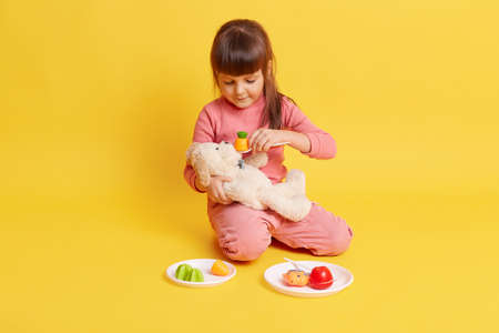 Little European dark haired female child sitting on floor and playing with toys, girl holding soft dogs in hands and feeding him with plastic toy vegetables from white plate, kid wearing pink attire.