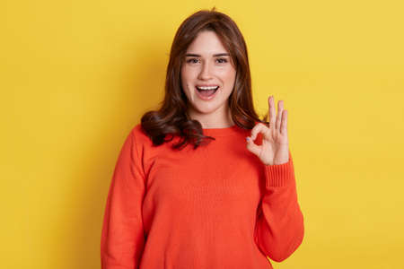 Positive joyful young girl wearing casual attire showing okay sign and looking at camera with excited look, lady shows approval sign, isolated over yellow background.