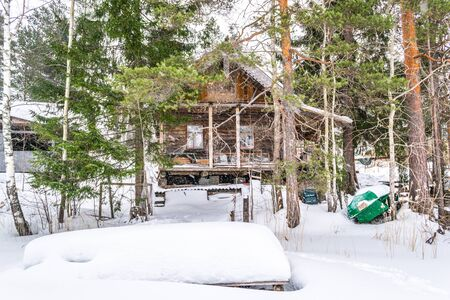 beautiful winter landscape with log house and pines Фото со стока