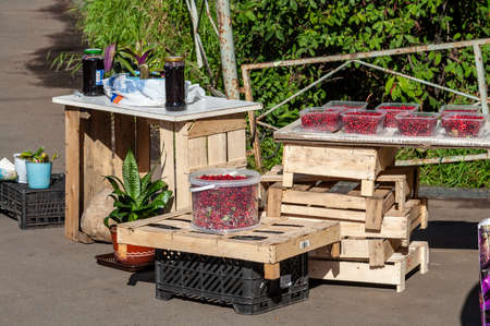 street sale of cranberries or lingonberries. wooden boxes instead of a counter