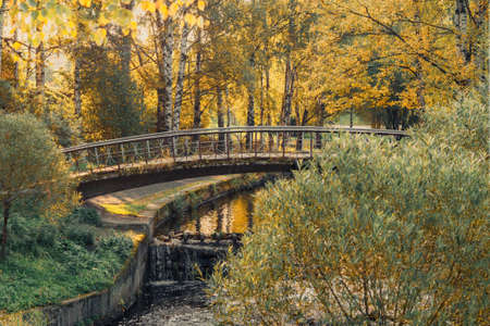 beautiful autumn landscape with a bridge over a small river in the park