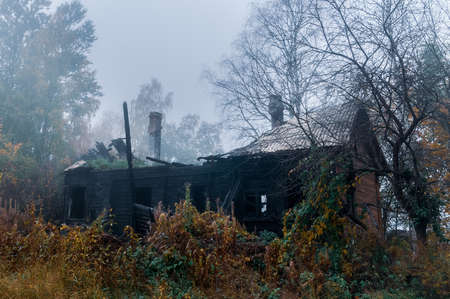burnt and abandoned wooden house on autumn foggy day Фото со стока