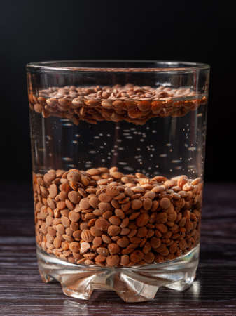 close-up of lentil beans are soaked in a glass of water. preparation for sprouting lentils Фото со стока