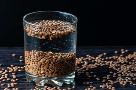 lentil beans are soaked in a glass of water. preparation for sprouting lentils