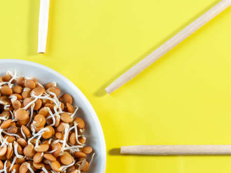sprouted beans in a white plate and wooden sticks on a bright yellow background. High quality photo