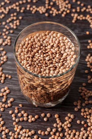 top view on the lentils are soaked in a glass of water. preparation for sprouting lentils