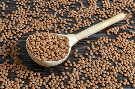 wooden spoon with lentil beans on backgrounds with beans Фото со стока - 158568361