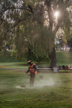 worker in protective mask mows the lawn