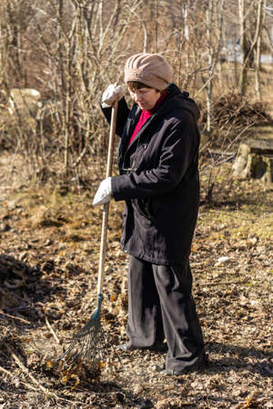 An elderly woman collects fallen leaves with a broom.