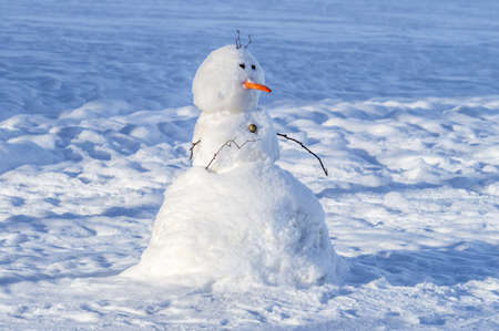 funny snowman with a carrot nose. High quality photo