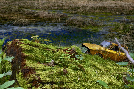 Old abandoned car rusting in the tall green grass Stock Photo