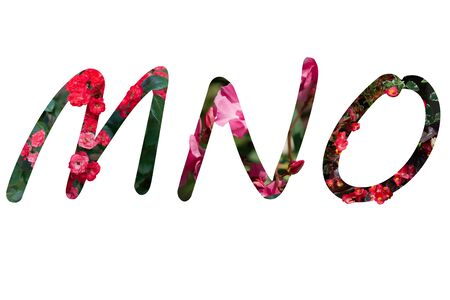 Flower font Alphabet M,N,O,made of Real alive flowers with Precious paper cut shape of letter. Collection of brilliant flora font for your unique decoration in spring, summer and many concept idea