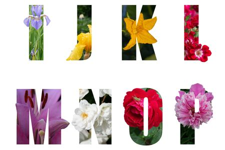 Flower font Alphabet i,j,k,l,m,n,o,p made of Real alive flowers with Precious paper cut shape of letter. Collection of brilliant flora font for your unique decoration in spring, concept idea Banco de Imagens