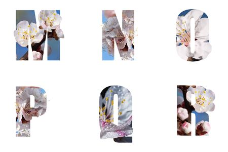 Flower font Alphabet m, n, o, p, made of Real alive flowers with Precious paper cut shape of letter. Collection of brilliant flora font for your unique decoration in spring, summer many concept idea
