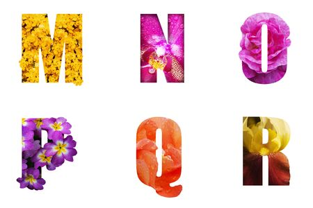 Flower font Alphabet a, b, c, d,e,f made of Real aliverose rose flower cut shape of letter. Collection of brilliant flora font for your unique decoration in spring, summer many concept idea