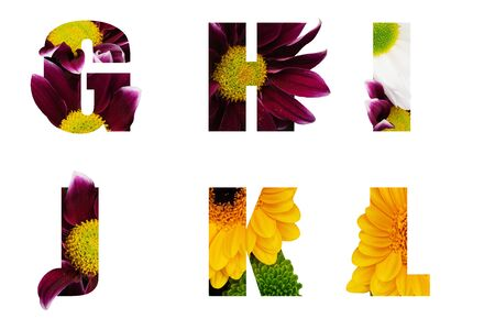 Flower font Alphabet g,h,i,j,k,l made of Real aliverose rose flower cut shape of letter. Collection of brilliant flora font for your unique decoration in spring, summer many concept idea Imagens