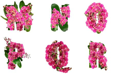 Letters M N O P Q R of beautiful flowers and branches of orchidsFloral letters of the alphabet for design and decoration..