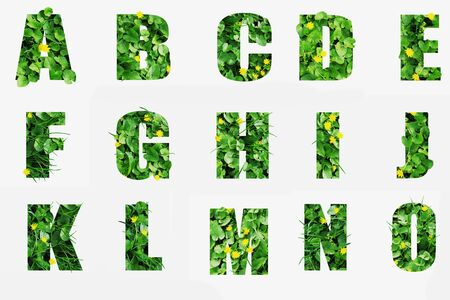 Letters A B C D E F G H I J K L M N O made of green grass isolated on white.Letters from green vegetation with blades of grass and flowers giving volume to the shapes. Banco de Imagens