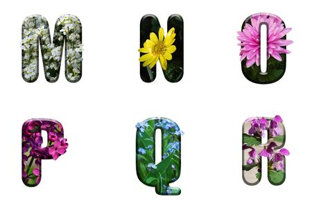 Flower font Alphabet m n o p q r made of Real alive flowers with Precious paper cut shape of letter. Collection of brilliant flora font for your unique decoration in spring, summer
