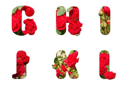 high resolution alphabet letter G H I J K L made from red rose isolated on a white background