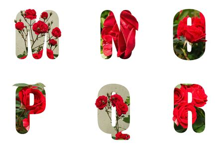 high resolution alphabet letter M N O P Q R made from red rose isolated on a white background