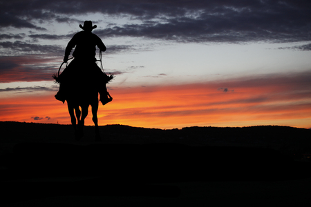Silhouet van de cowboy op een paard tijdens mooie zonsondergang Stockfoto