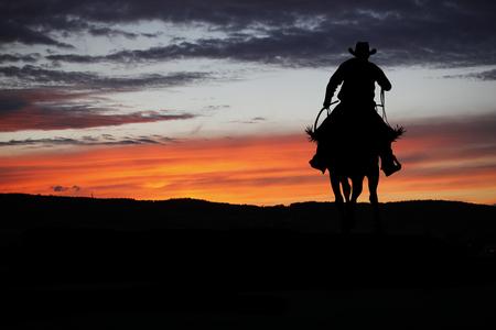 Silueta del vaquero en un caballo durante la puesta del sol agradable