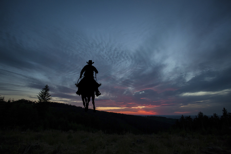 Cowboy silhouette on a horse during nice sunset