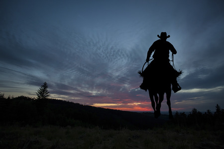 Cowboy silhouette on a horse during nice sunset 版權商用圖片 - 64320404