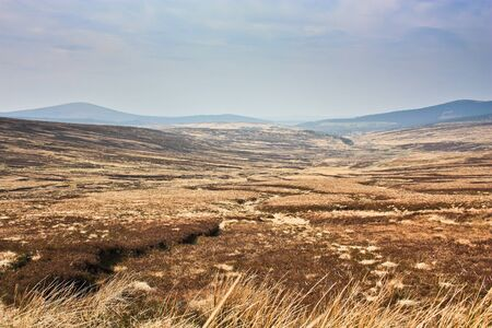 Heathlands and a winding creek on a hazy day In the mountains photo
