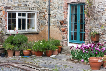 door leaf: Backyard with tulips and orange flower pots Stock Photo