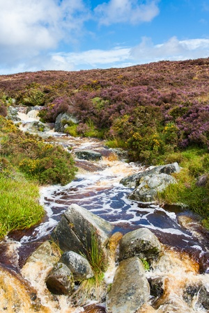 River in Wicklow Mountains photo
