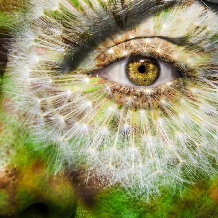 Face with brown eye and painted dandelion photo