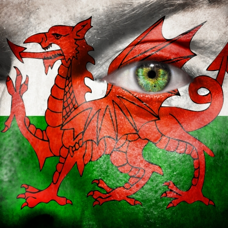 Flag painted on face with green eye to show Wales support photo