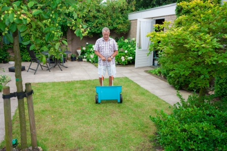 Dutch retired senior fertilising his grass lawn as retirement activity with a blue fertilizer dispenser on wheels Stock Photo - 14950655