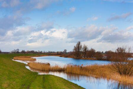 floodplain: Floodplain with reed and banks against cloudy blue sky Stock Photo