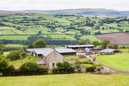 Irish farm in Northern Ireland with a mountain backdrop photo