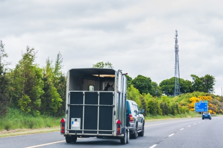 thoroughbred horse: SUV pulling a horse trailer on the highway