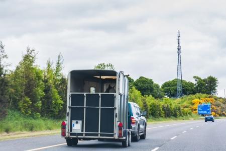 transportation: SUV tirando un rimorchio del cavallo in autostrada Archivio Fotografico