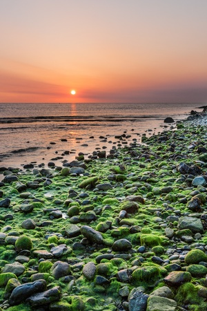 sunup: Mossy rocks and sunrise at Bray Head in Bray County Wicklow Ireland Stock Photo