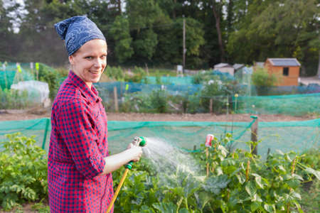 sufficiency: Smiling young woman watering courgette in an allotment