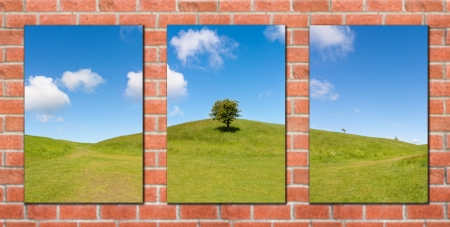 triptych: Triptych of a tree on a hill displayed on a red wall