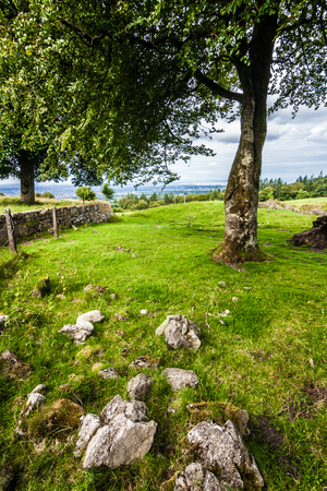 Beautiful Idyllic landscape with rocks and a tree in Ireland where nature meets man-made photo
