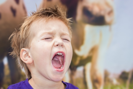 Frantically shouting boy Stok Fotoğraf