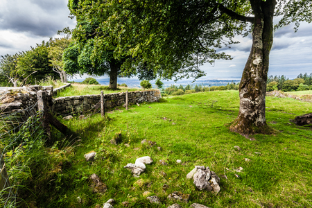 Idyllic little landscape surrounded by a wall in Ireland where nature meets man-made photo