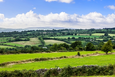 Typical green Irish country side with rolling fields and green patches photo
